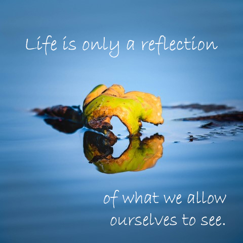 leaf reflection in water. Text: Life is only a reflection of what we allow ourselves to see